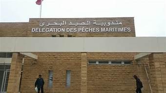 مهنيو الصيد بالجديدة يشجبون كل مس بإدارة مندوبية الصيد البحري و مهنيي القطاع